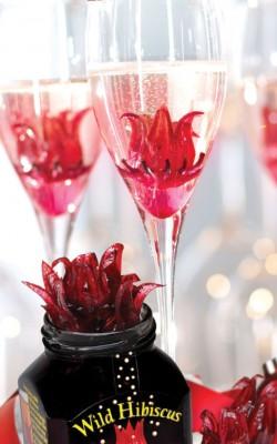 Champagne – FLEUR D'HIBISCUS 14.99$ ch.